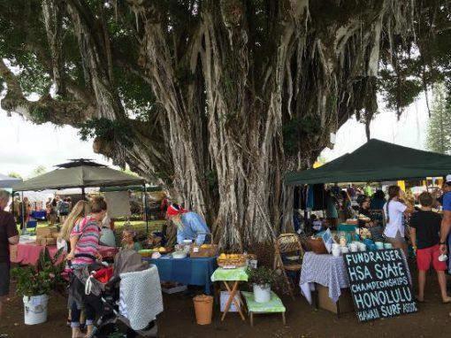 Big Island Farmer's Markets – Kohala Area